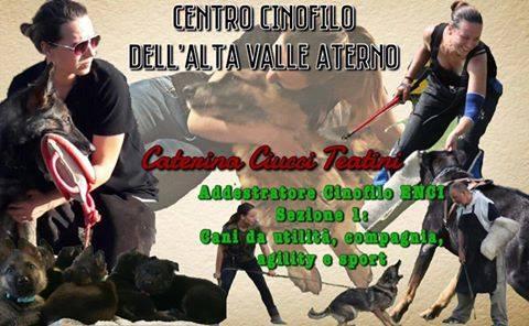 centro_cinofilo_alta_valle_aterno